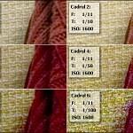 experiment foto: ISO vs F vs T