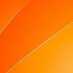 Vacaroiu – mission statement